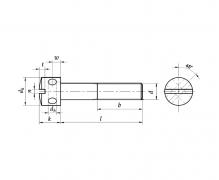 DIN 404, Wkręty do metalu z łbem walcowym z otworami i rowkiem (do plomb)